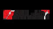 silver-needle-logo
